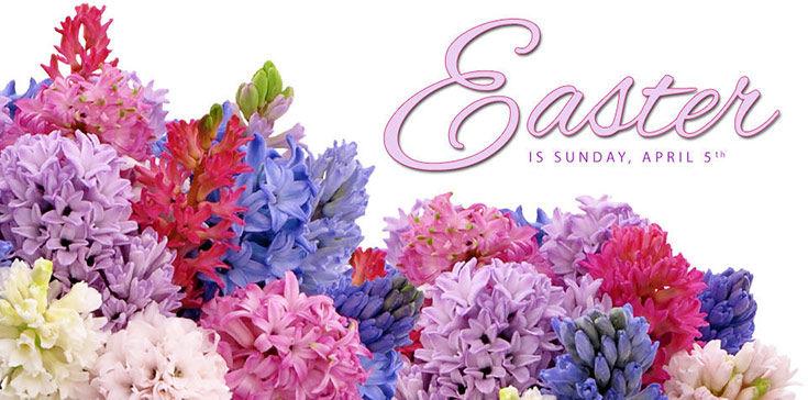 Easter flowers Tulsa, OK delivered to